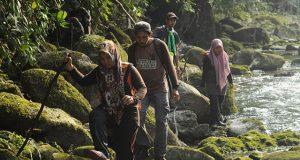 Perhutanan Sosial Menuju Masyarakat Gayo Lues Sejahtera dan Hutan Lestari