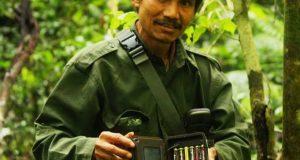 Ibrahim Ketambe, Ahli Identifikasi Jenis Tumbuhan