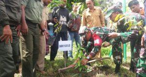 TNI 0113 Gayo Lues Tanam 5000 Pohon di Desa Badak