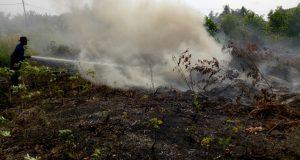 BNPB Kerahkan 18 Helikopter Pembom Air untuk Tangani 5 Provinsi Siaga Darurat Karhutla