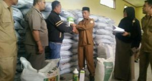 Distan Aceh Tengah Salurkan Saprodi Komoditi Cabe