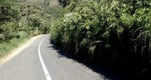 Masyarakat Keluhkan Penyempitan Jalan Takengon-Jagong Karena Rumput Liar