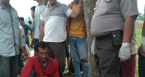 Diduga Korban Pembunuhan, Mayat Wanita Ditemukan di Kebun Jagung