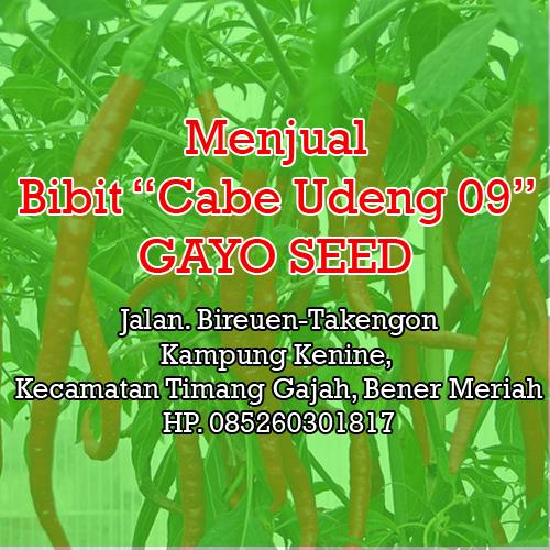 Cabe Udeng